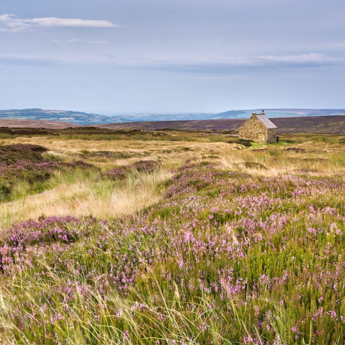 Trough House, Glaisdale Moor