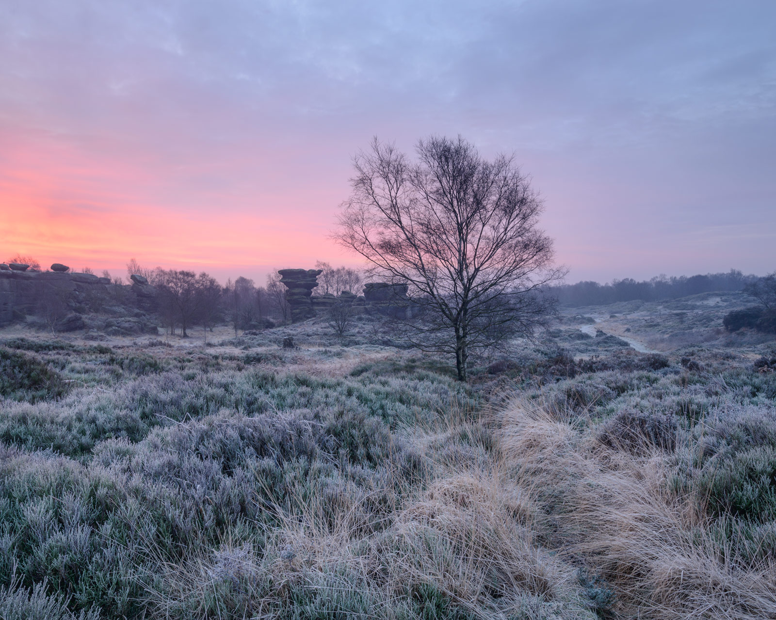 A frosty Brimham Moor, just before sunrise