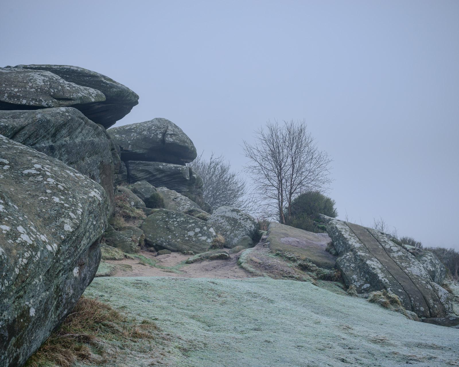 Striped boulder, Brimham Rocks - Nikon 50mm at f/8