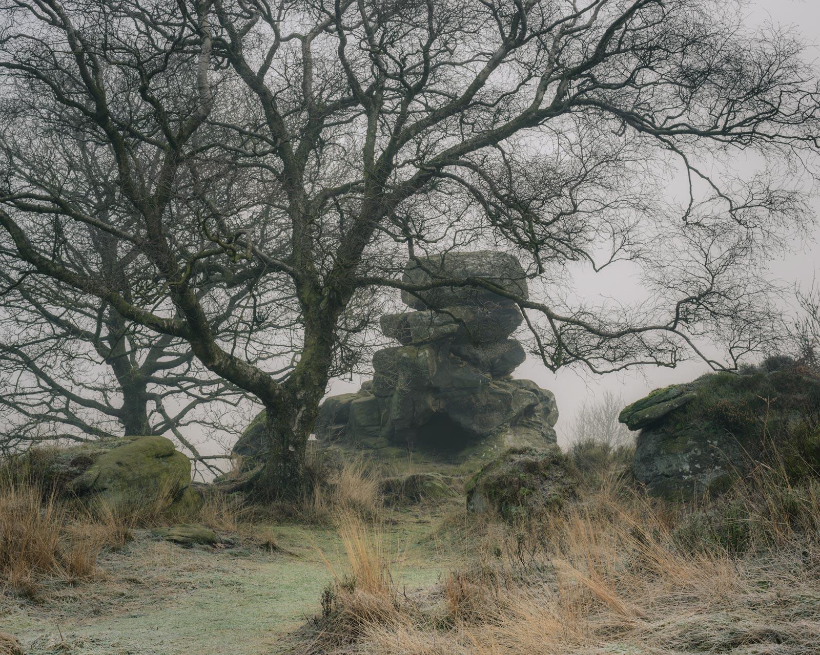 A Winter's morning at Brimham Rocks - Nikon 50mm at f/11