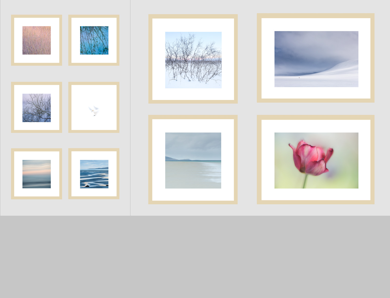 My panel of photographs for display at the Guildford Arts Festival